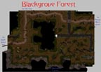 Blackgrove Forest
